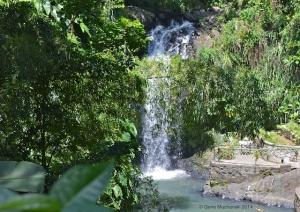 Grenada_Annandale Waterfall_640