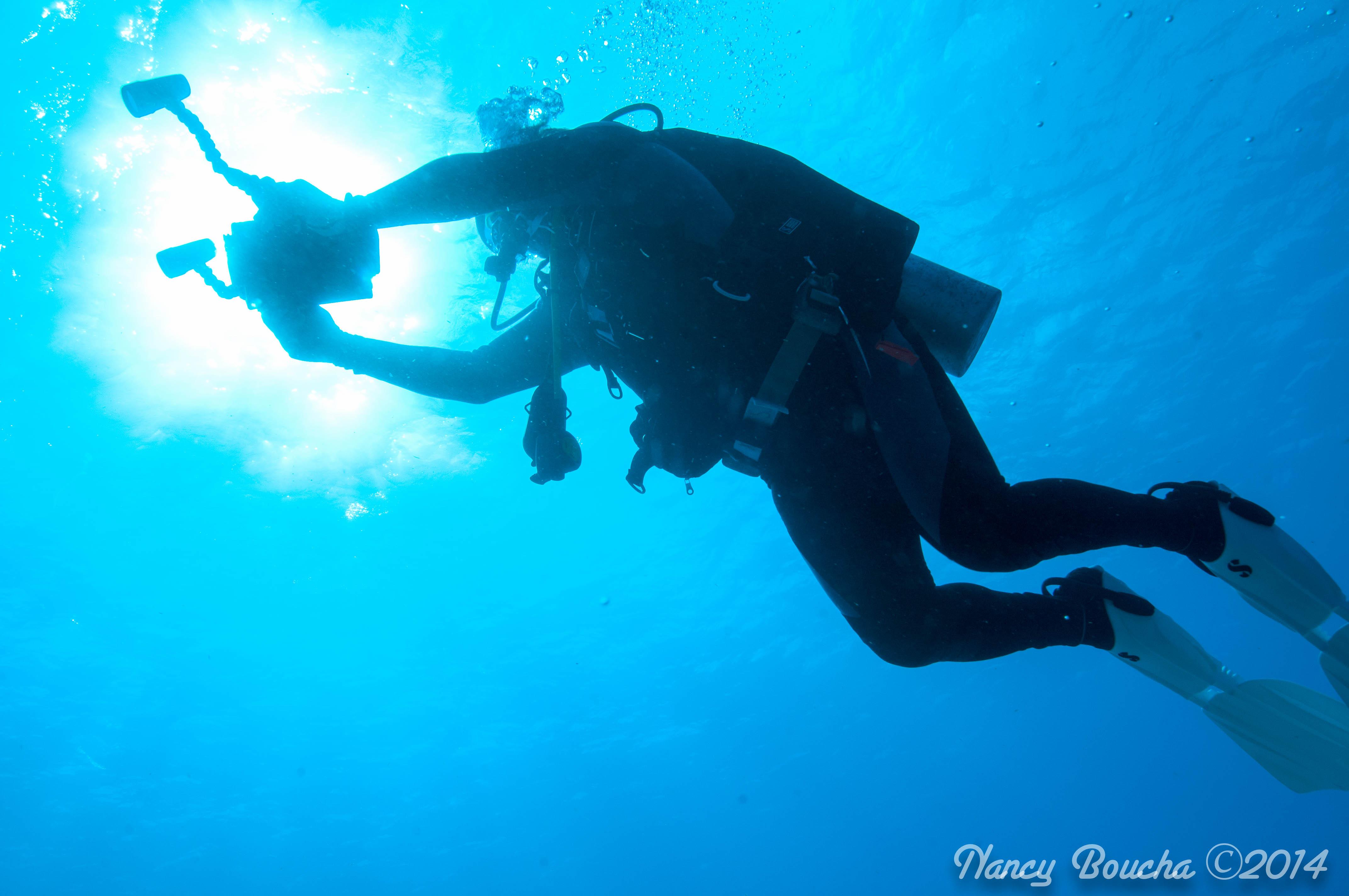 Njbcozj Underwater Dining In Florida