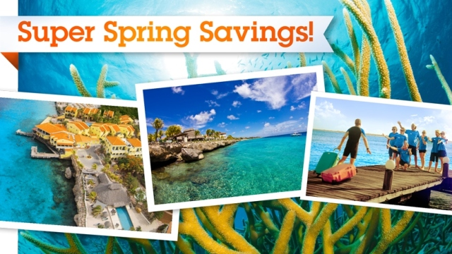 Buddy-super-spring-savings-2015