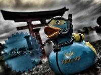 naui-duck